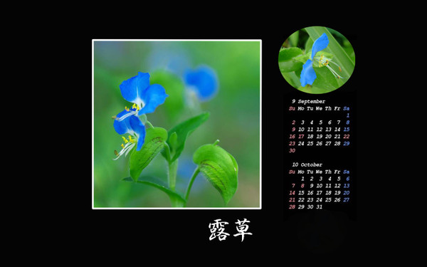 Calendar_8910maro02