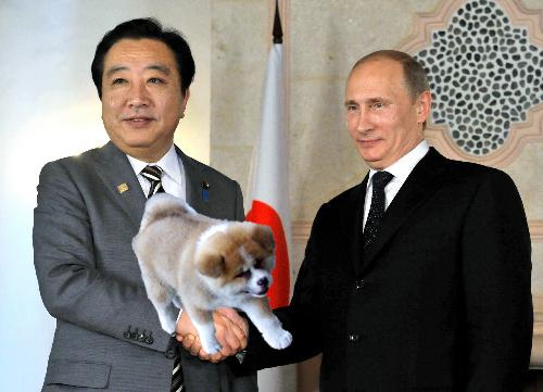 Putin_inu