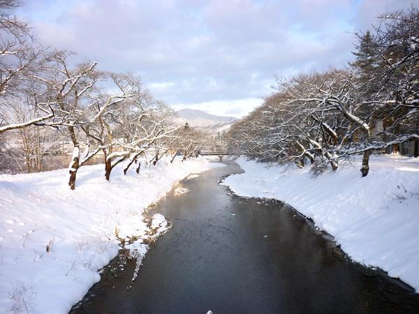 2012_12_28_018a